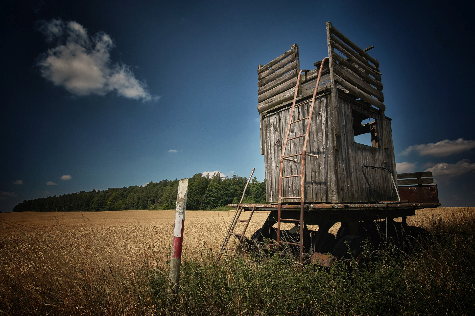 Mobile hunting seat with rusty ladder